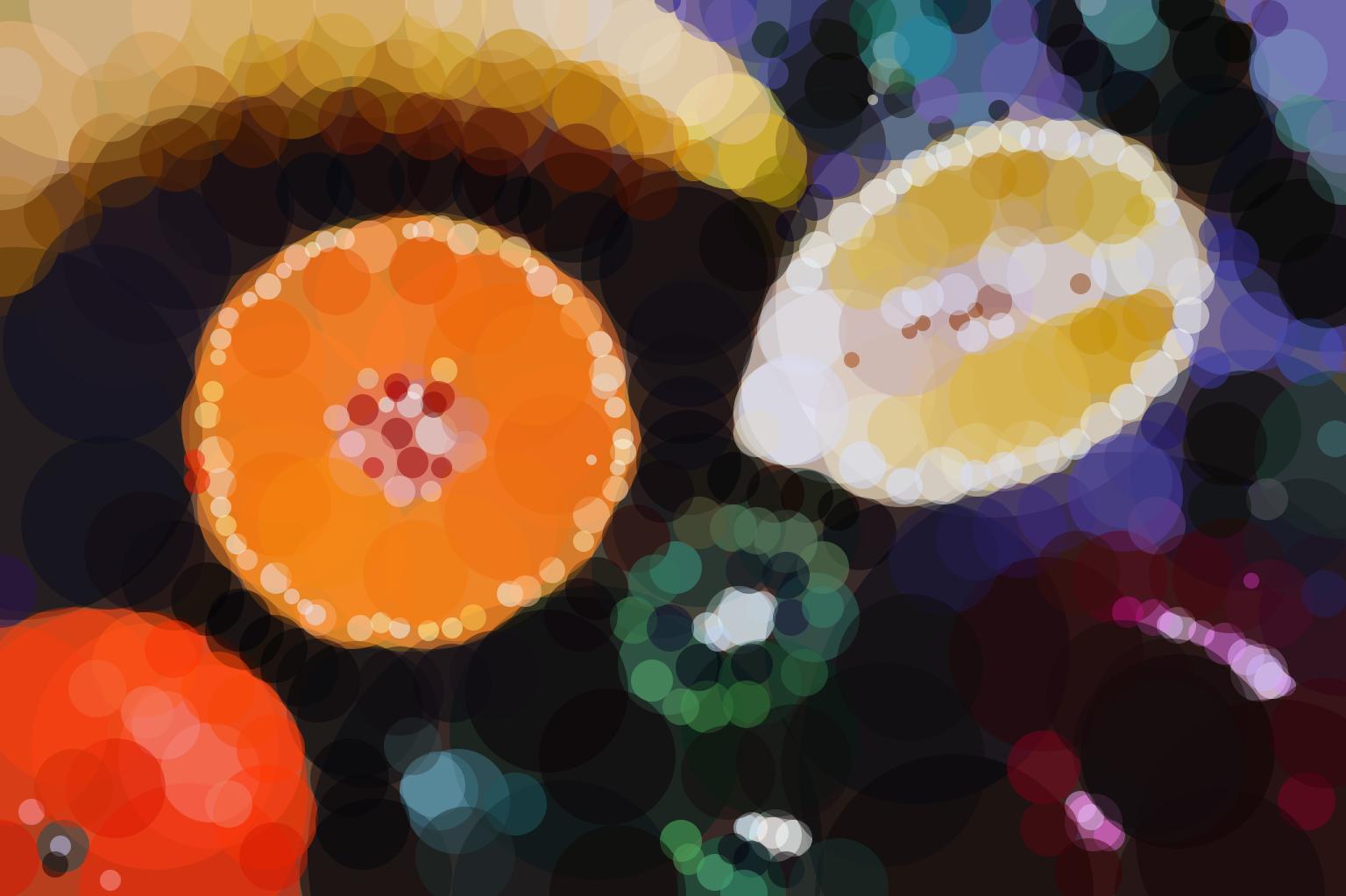 Geometrized Sliced Fruit - 500 circles